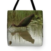 Whtie Faced Ibis 2 Tote Bag