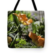 Wide Open Tulips Tote Bag