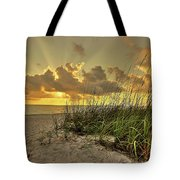 Wiggins Pass Sunset Tote Bag