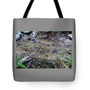 Wild Animal Prints Tote Bag