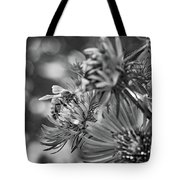 Wild Aster And Honey Bee Bw Tote Bag
