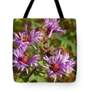Wild Asters Tote Bag