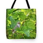 Wild Bird In A Currant Bush. Tote Bag