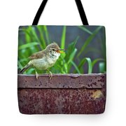 Wild Bird In A Natural Habitat.  Tote Bag