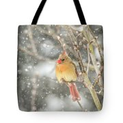 Wild Birds Of Winter - Female Cardinal In The Snow Tote Bag