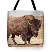 Wild Bison Tote Bag