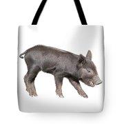 Wild Black Piglet Tote Bag