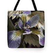 Wild Blue Iris Tote Bag