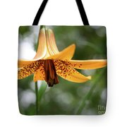 Wild Canadian Lily Tote Bag