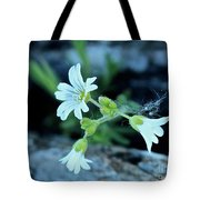 Wild Chickweed Tote Bag