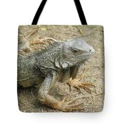 Wild Colorful Iguanas In The Outdoors With Spines On His Back Tote Bag