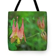 Wild Columbine Tote Bag
