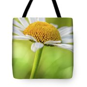 Daisy Tote Bag by Ron Pate