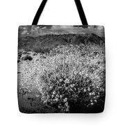 Wild Desert Flowers Blooming In Black And White In The Anza-borrego Desert State Park Tote Bag