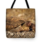 Wild Desert Tortoise Saguaro National Park Tote Bag by Steve Gadomski