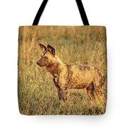 Wild Dog Of Botswana Tote Bag