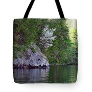 Wild Dogwood Tote Bag