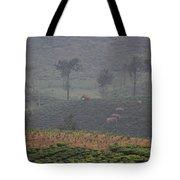 Wild Elephants, Valparai Tote Bag