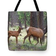 Wild Elk Baby And Mom Tote Bag