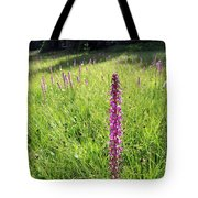 Wild Flowers In The Uinta's Tote Bag