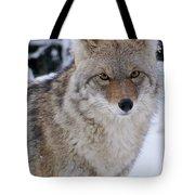 Wild Free And Beautiful Tote Bag