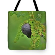Wild Fruit Tote Bag