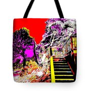 Wild Goddess At Kashi Tote Bag by Eikoni Images
