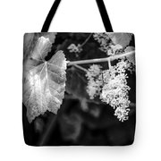 Wild Grapes In Light 2 Tote Bag