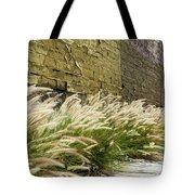 Wild Grass Along An Alley Wall Tote Bag
