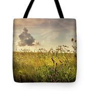 Wild Grass And A Lonely Cloud Tote Bag