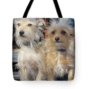 Wild Hair Dogs Tote Bag