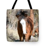 Wild Hair Tote Bag
