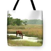 Wild Horse In Saltmarsh Tote Bag