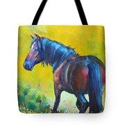 Wild Horse On Dartmoor - Roaming Free Tote Bag