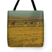 Wild Horses And Antelope-signed-#2216 Tote Bag