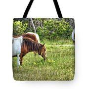Wild Horses Of Assateague 5 Tote Bag