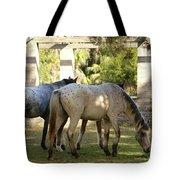Wild Horses Of Cumberland Tote Bag