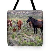 Wild Horses Of White Mountain Tote Bag