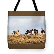 Wild Horses On The Bisti Tote Bag