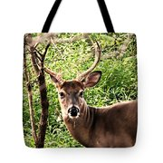 Wild In The Country Tote Bag