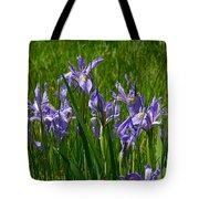 Wild Iris 1 Tote Bag