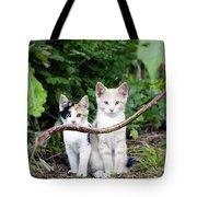 Wild Kats Tote Bag
