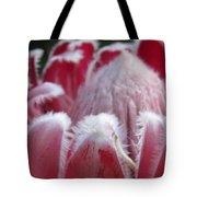 Wild King Protea Tote Bag