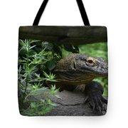 Wild Komodo Dragon Creeping Through Fallen Trees Tote Bag