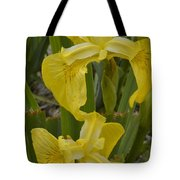 Wild Lilly Tote Bag