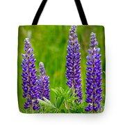 Wild Lupine Tote Bag