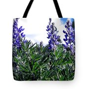 Wild Lupines Tote Bag