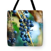 Wild Michigan Grapes Tote Bag