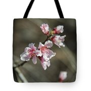 Wild Mountain Blossoms Tote Bag