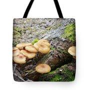 Wild Mushrooms 2 Tote Bag